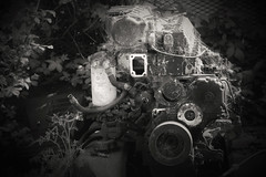 Steampunk (sarahellenspringer) Tags: 7dwfbw 7dwf steampunk machine engine cobwebs circle hidden forgotten foliage weeds broken old abandoned
