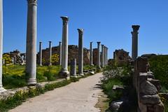 DSC_0260 (mark.greefhorst) Tags: cyprus northerncyprus salamis ancientworld roman