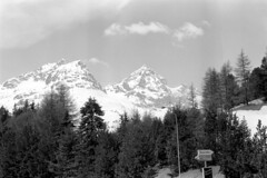 04a3371 23 (ndpa / s. lundeen, archivist) Tags: nick dewolf nickdewolf bw blackwhite photographbynickdewolf film monochrome blackandwhite april 1971 1970s 35mm europe centraleurope switzerland swiss alpine alps graubünden grisons stmoritz easternswitzerland suisse schweitz mountains peaks snow snowy snowcovered skiresort skiarea skislopes landscape trees sign suvretta suvrettahouse julier maloja juliermaloja swissalps