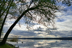 Ostersonntag (Don Bello Photography) Tags: frühling 2017 kleinnemerow tollensesee abendlicht abendstimmung acdsee abendruhe himmel himmelsbilder wolken wasser mecklenburgischeseenplatte reflektionen panasonicphotographer panasonicfz1000 lumixphotographer lumixfz1000 reinhardbellmann donbello donbellophotography 50favorites 1000views 2000views 100favorites 3000views sky 4000views