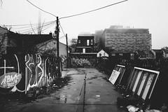 ordinary.time (jonathancastellino) Tags: toornto street graffiti kensington fog mistwire poll wires lame alley ordinary leica q fence distance hospital rain puddle