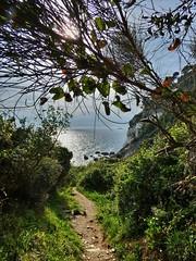 Punta Bianca (Luna y Valencia) Tags: puntabianca ameglia montemarcello boccadimagra liguria laspezia