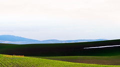 Valley (Objects1000) Tags: palouse landscape artistic nature easternwashington abstract rollinghills meadow hills light shadows scenery scenic patterns colors green texture vibrant garfield washington unitedstates us