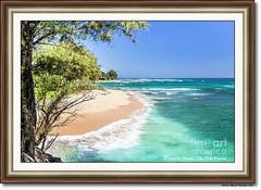 Private Beach, Kauai (Daryl L. Hunter - Hole Picture Photo Safaris) Tags: privatebeach kauai