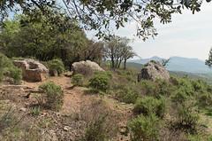 Fertility chair and irratics (AJ Mitchell) Tags: sandstone outcrop monolith protohistory bélènos fertility rites pagan lodévois