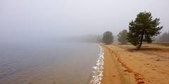 Posio beach (sakarip) Tags: sakarip posio livojärvi finland north lapland beach autumn water lake trees pine fog misty isohietajärvi lakescape landscape farawayfrommostofyou faraway