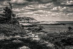 Duncan Cove (Vanili11) Tags: duncan cove novascotia