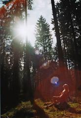 Janne (Jan Meifert) Tags: agfa agfaphoto vista plus 200 analogue analog film 35mm forest wald outdoor portraiture portrait porträt sun light sonne licht sonnenlicht nature jan meifert
