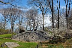 New York (m0rus ✈︎) Tags: travel newyork usa centralpark