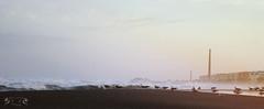 Temporal (Noemi Ventosa) Tags: beach playa seagulls gaviotas olas mar ocean