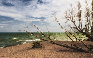 Lake Eire, The Tip of Long Point - Point Pelee National Park (Ontario, Canada)