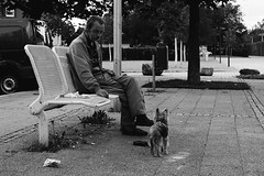 unbenannt (OliverPetrus) Tags: life street old portrait people dog pet man art fountain beer 35mm canon bench hair person grey evening town mood hand place emotion bend smoke atmosphere stroke down shy stranger master wise rest worker moment blink cigarettes emotive endearing banal ask provincial ordinary rolled 550 caracter resident lonesome likable