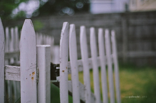 144.365 | the old fence