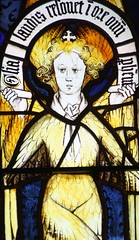 Seraphim (richardr) Tags: old city uk greatbritain england english heritage history church glass angel geotagged europe european cathedral unitedkingdom britain stainedglass medieval historic e british coventry europeanunion warwickshire midlands seraphim themidlands geo:lat=5240831 geo:lon=1507118