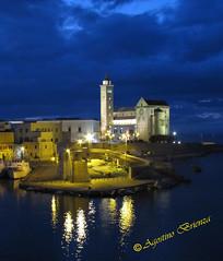Trani....ora blu (lothar2009 - Getty Images Contributor -) Tags: italy canon italia puglia trani meridione italiameridionale agostinobrienza vigilantphotographersunite vpu2 vpu3 vpu4 vpu5 vpu6 vpu7