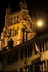 Fausse lune (zmi66 - ZMIphoto) Tags: show street trip light people art fleur switzerland spring raw suisse lausanne fujifilm printemps xe1 romand summicronf250mm romandsuisse