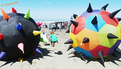 Be careful that you are not caught in the balls (Steve Taylor (Photography)) Tags: ocean shadow sea newzealand christchurch summer sun kite playing game beach kids ball children fun jumping sand pacific sunday crowd january sunny canterbury inflatable nz points mines southisland colourful 27 kiteday newbrighton 2013
