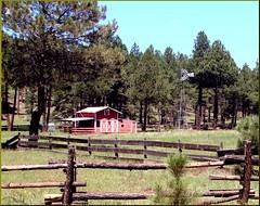 Ranch Perfection, Oak Creek Canyon, AZ 7-30-13 (inkknife_2000 (6.5 million views +)) Tags: ranch fence corral polefence azsedona oakcreekcanyonarizonaazhwy89atreesforestsstreamscreekspinecloudsandskyredrockrockwallsrockspiresusaflagstaff azlandscapesamericanlandscapesscenicdrives usadgrahamphoto