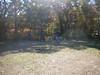 GreyhoundPlanetDay2010003
