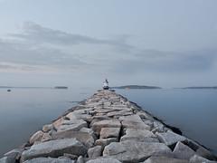 A Smaller Light (jp3g) Tags: lighthouse water portland maine panasonic g3