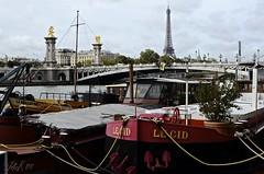 Paris (Arnolt S.) Tags: paris france seine 35mm frankreich ship eiffeltower eiffelturm nikond5100 nikonafs3518g