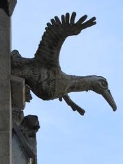 Blue-Footed Booby Gargoyle (Patricia Henschen) Tags: quito ecuador gargoyle basilicadelvotonacional basilicaofthenationalvow