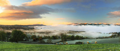 Sometimes you just get Lucky (bojangles_1953) Tags: morning mist sunrise lakedistrict windermere cloudinversion