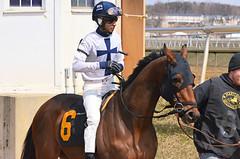 "2013-03-27 (71) r5 Julian Pimentel on #6 Madog (JLeeFleenor) Tags: photos photography marylandracing md marylandhorseracing laurelpark jockey جُوكِي ""赛马骑师"" jinete ""競馬騎手"" dżokej jocheu คนขี่ม้าแข่ง jóquei žokej kilparatsastaja rennreiter fantino ""경마 기수"" жокей jokey người horses thoroughbreds equine equestrian cheval cavalo cavallo cavall caballo pferd paard perd hevonen hest hestur cal kon konj beygir capall ceffyl cuddy yarraman faras alogo soos kuda uma pfeerd koin حصان кон 马 häst άλογο סוס घोड़ा 馬 koń лошадь maryland"