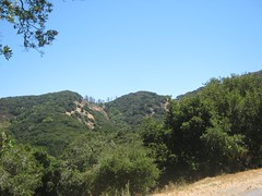 """Angel Island • <a style=""""font-size:0.8em;"""" href=""""http://www.flickr.com/photos/109120354@N07/11042906514/"""" target=""""_blank"""">View on Flickr</a>"""