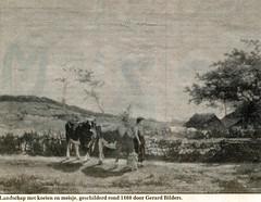 Renkum collectie Fien Bos034 (Historisch Genootschap Redichem) Tags: schilderij collectie landschap renkum koeien 1860 gerardbilders fienbos