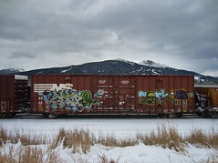 80's Babies (YardJock) Tags: graffiti ns spraypaint boxcar piece freighttrain norfolksouthern paintedsteel