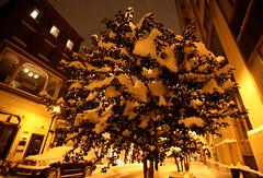 January 2014 Snowstorm 92 (David OMalley) Tags: city winter snow storm cold philadelphia night square pennsylvania snowy snowstorm january freezing rittenhouse center pa philly blizzard frigid wintry