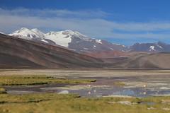 Pissis and Laguna Negra