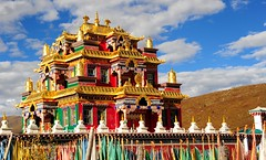 Dzogchen Gompa, one of its many new temples, Tibet 2013 (reurinkjan) Tags: tibetan nyingma 2013 landscapepicture dzogchenmonastery བོད་ལྗོངས། ©janreurink tibetanplateauབོད་མཐོ་སྒང་bötogang tibetབོད buddhistསངས་རྒྱས་ཆོས་ལུགས་པ snowmountainགངས་རི།gangsri buddhismསངས་རྒྱས་ཆོས་ལུགས།sangsrgyaschoslugs natureofphenomenaཆོས་ཀྱི་དབྱིངས་choskyidbyings snowཁ་བ།khaba landscapesceneryརི་ཆུ་ཡུལ་ལྗོངསrichuyulljongsrichuyünjong natureརང་བྱུང་ཁམས་rangbyungrangjung greatertibetབོད་ཆེན་པོböchenpo tibetannationalitytibetansབོད་རིགས།bodrigs landscapepictureཡུལ་ལྗོངས་རི་མོyulljongsrimoyünjongrimo tibetannationtibetanpeopleབོད་ཀྱི་མི་བརྒྱུདbökyimigyü khamཁམས།easterntibet ༢༠༡༣ khamཁམས་བོད khamsbodkhamwö dergeསྡེ་དགེ།county dzogchengonpaརྫོགས་ཆེན་དགོན་པ་ dzochenrudamorgyensamtencholinggonpaརྫོགས་ཆེན་དགོན་པ་ landscapeཡུལ་ལྗོངས།yul ljongsyünjong earthandwaternatural environmentས་ཆུ་sachu snowmountainས་འཛིན་དཀར་པོ་sadzindkarpo sandzinkarpo