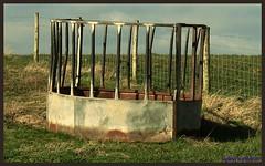 farming (kian1959) Tags: food farm bin