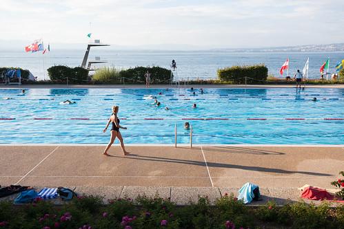 Piscine - Bassin olympique
