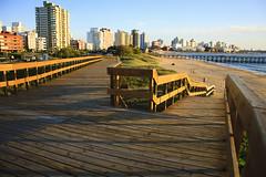 Playa mansa de Punta del Este