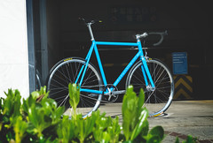 F550s Custom : Tom (Factory Five) Tags: china blue beautiful bike sparkles bars track factory shanghai 5 five gear son drop h plus fixed fixie lightning cannondale shimmer suzue