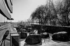 Let's Never Forget (CVerwaal) Tags: blackandwhite monuments newyork ny usa gardenofstones andygoldsworthy museumofjewishheritage ricohgr batteryparkcity trees