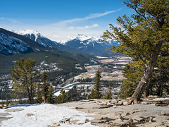 View of Banff from Tunnel Mountain Summit (rskura) Tags: banffnationalpark