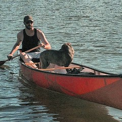 Pups first ride (Ontario_BWO) Tags: puppy canoe canoeing summer