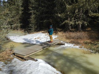 Brown-Lowery Provincial Park - Ben on the bridge