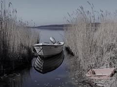 POL 5 (Wunderlich, Olga) Tags: boot fischerboot schilf reet wasser rügen insel spiegelung reflexion deu kiste rot eimer motor