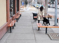 Dog Scenes (Sherlock77 (James)) Tags: calgary streetphotography people woman dog