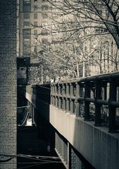 IMG_1158 (kz1000ps) Tags: newyorkcity nyc manhattan architecture urbanism cityscape splittone chelsea highline park elevated railroad