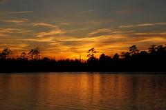 Beyond the Forest (Jim Atkins Sr) Tags: sunset spectacularsunsetsandsunrises cloudsstormssunsetssunrises creek fairfieldharbour northcarolina northwestcreek sonyphotographing sonya58 sony