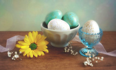 Happy Easter Sunday! (Through Serena's Lens) Tags: happyeastersunday easter april eggs texture cup bowl stilllife ribbon flower daisy indoor colorful tabletop