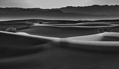 Mesquite Sand Dunes, Death Valley_ (Basak Prince Photography) Tags: deathvalley nationalpark places badlandssaltflats desert parks
