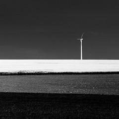Wind Turbine (Mabry Campbell) Tags: 2012 50mm europe mabrycampbell malmö may mårtensfäladlinero scandinavia skane skåne sweden farm field fineartphotography hillcountry horizon image landscape malmo minimal minimalism photo photograph photography power rapeseed raps rapseed rapsseed southsweden southernsweden spring squarecrop sverige turbine windturbine f28 may182012 201205189763 ¹⁄₈₀₀₀sec 100 ef50mmf14usm fav10 fav20 fav30 fav40 fav50 fav60
