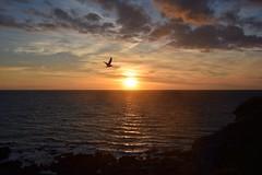 Sunset at Clarach (karen leah) Tags: sunset ceredigion clarach sea water
